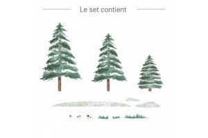 Foret , sapins?