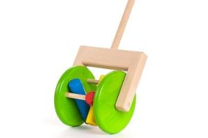 Rattle Push Toy
